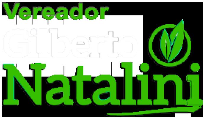 Gilberto Natalini SP